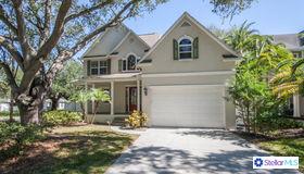 2820 Sanders Drive, Tampa, FL 33611