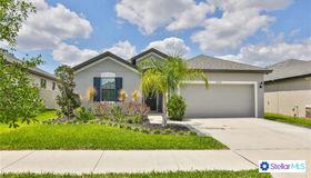 12142 Creek Preserve Drive, Riverview, FL 33579