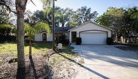 8611 Alafia Ridge Road, Riverview, FL 33569
