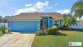23811 Pine Gulch Court, Leesburg, FL 34748