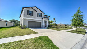 13203 Wildflower Meadow Drive, Riverview, FL 33579