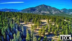 Golden Willow Road, Evergreen, CO 80439
