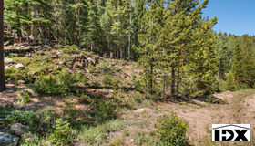 10229 Christopher Drive, Conifer, CO 80433