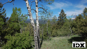 New To Be Determined Baird Road, Conifer, CO 80433