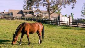 22490 Eden Valley Court, Saratoga, CA 95070