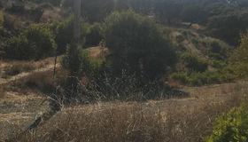 17545 Chesbro Lake Drive, Morgan Hill, CA 95037