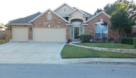 12006 Newton Trail, San Antonio, TX 78253
