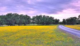 2734 Harvest Creek Ln, Boerne, TX 78006-7603