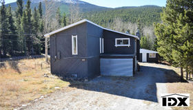 1531 Little Bear Creek Road, Idaho Springs, CO 80452