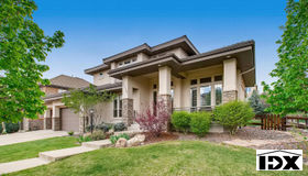 10058 South Shadow Hill Drive, Lone Tree, CO 80124