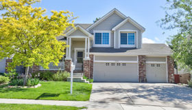 11693 Whooping Crane Drive, Parker, CO 80134