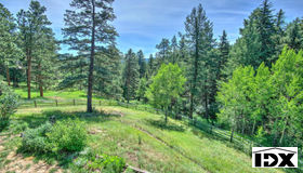 52 Wilderness Point Trail, Evergreen, CO 80439