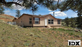 356 Crazy Horse Trail, Hartsel, CO 80449