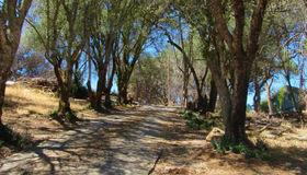 2900 Rollo Road, Santa Rosa, CA 95404