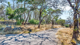 2769 Rollo Road, Santa Rosa, CA 95404