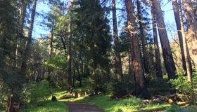3105 Mount Veeder Road, Napa, CA 94558