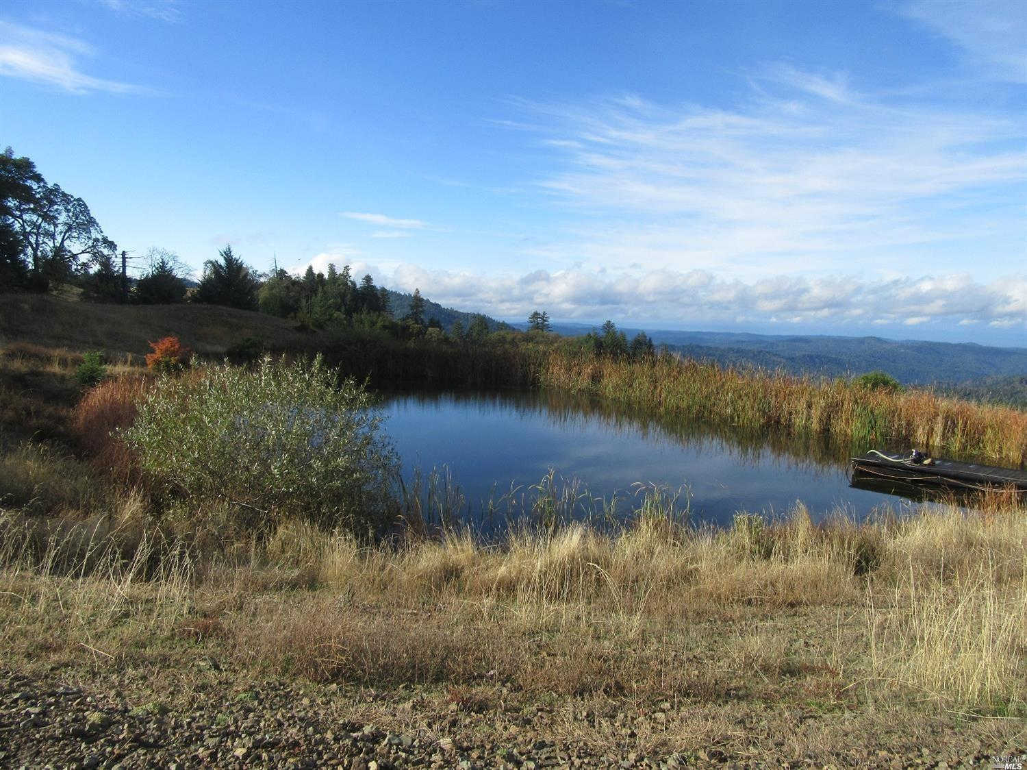 35501 Eureka Stagecoach Road, Willits, CA 95490 is now new to the market!