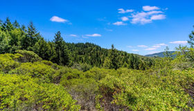 3172 Calistoga Road, Santa Rosa, CA 95404