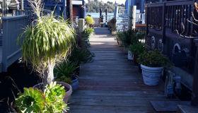8 Commodore Marina, Mill Valley, CA 94941