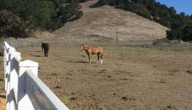 5430 Petaluma Hill Road, Santa Rosa, CA 95404