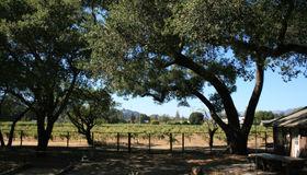 1380 El Bonita Avenue, St. Helena, CA 94574