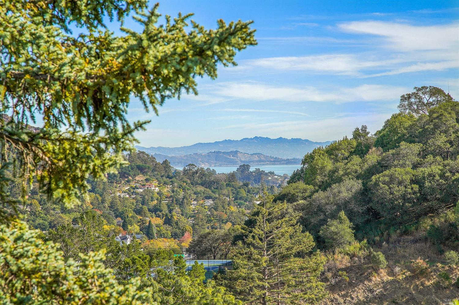 Another Property Sold - 47 Longwood Drive, San Rafael, CA 94901