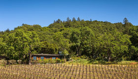 6000 Wildwood Mountain Road, Santa Rosa, CA 95409