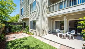 113 Eucalyptus Knoll Street, Mill Valley, CA 94941