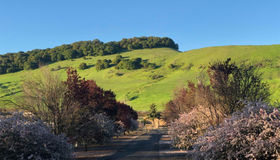 2120 American Canyon Road, American Canyon, CA 94503