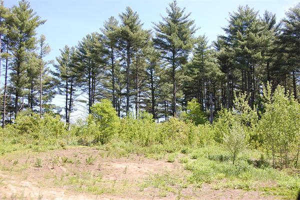 143 Shea Rd., West Brookfield, MA 01585 is now new to the market!