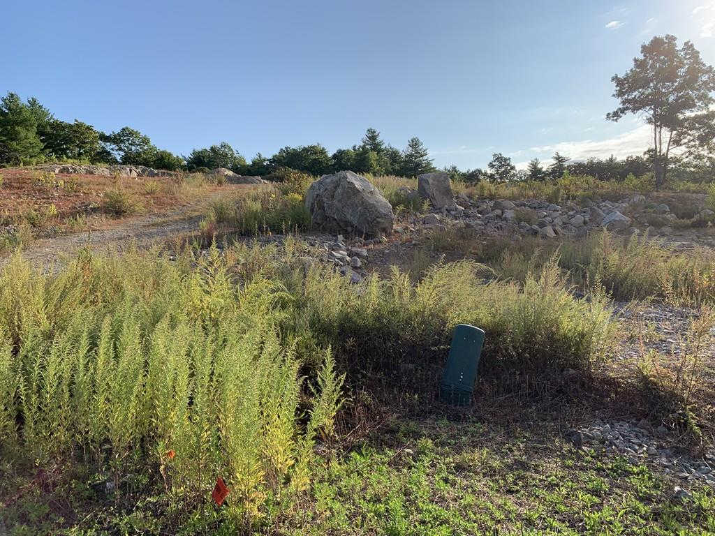 28 Field Circle ( Lot 13), Wrentham, MA 02093 is now new to the market!