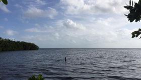 17601 Old Cutler Rd, Palmetto Bay, FL 33157