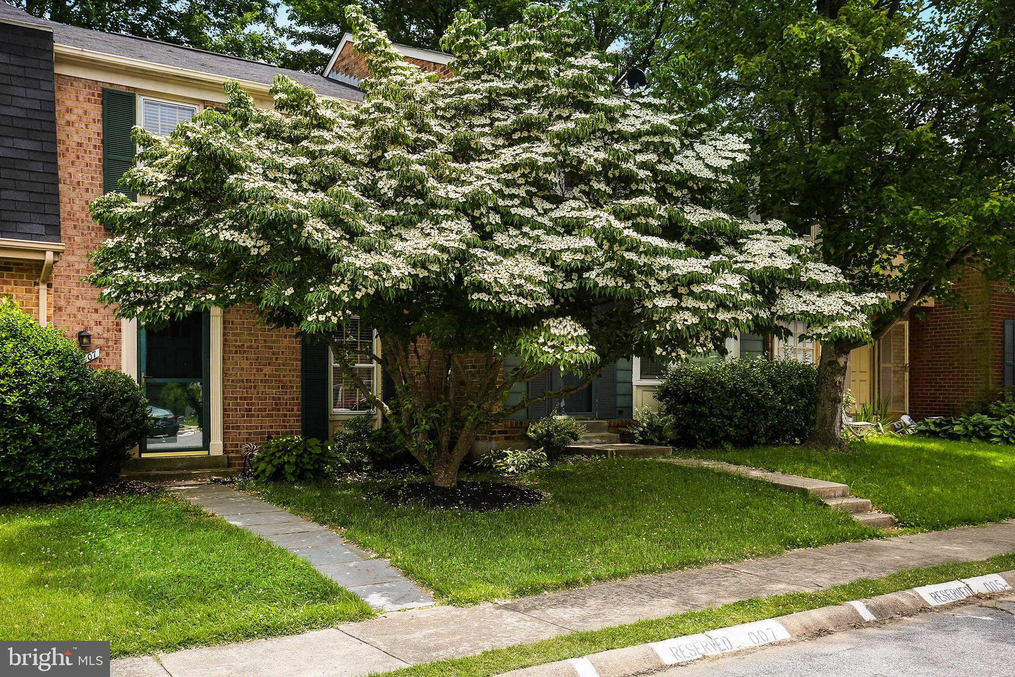 Another Property Sold - 20007 Hoffstead Lane, Montgomery Village, MD 20886