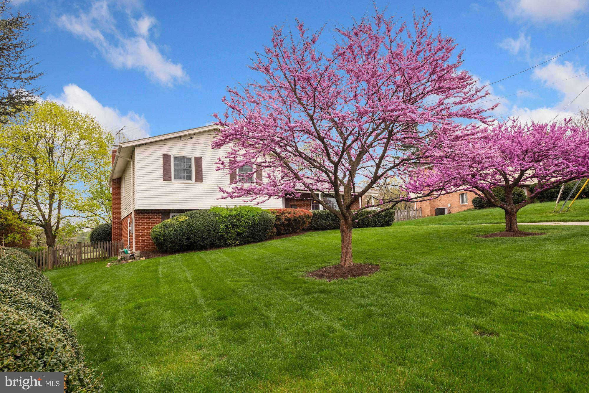 Another Property Sold - 11615 Greenlane Drive, Potomac, MD 20854