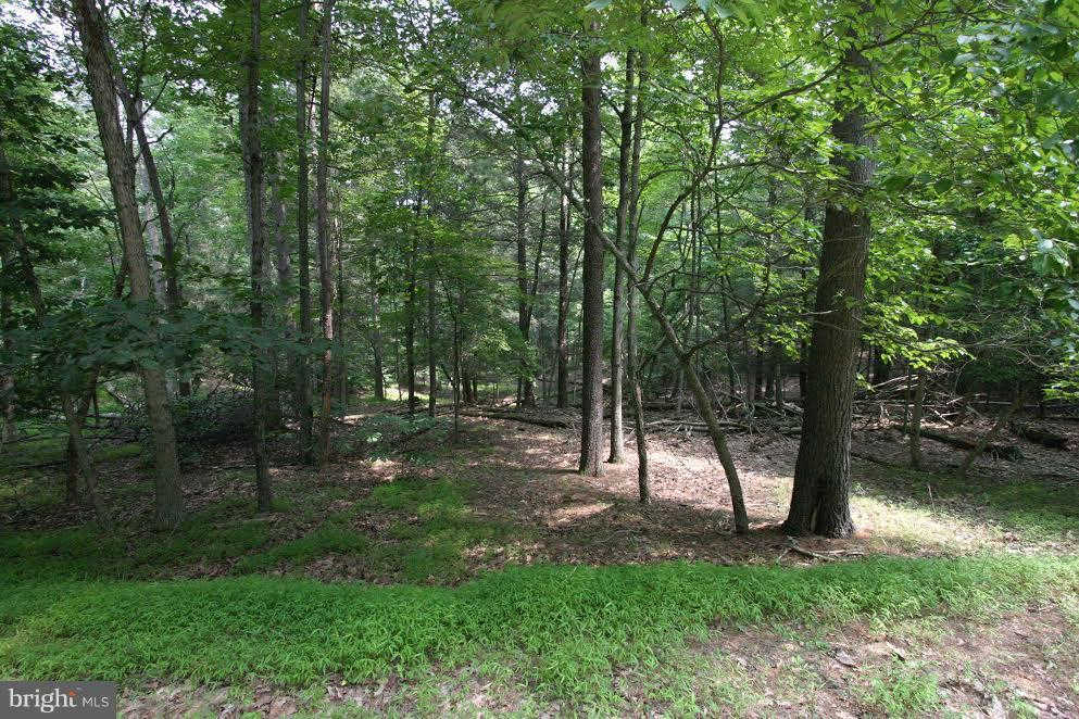 17 Constant Run, Great Cacapon, WV 25422 now has a new price of $29,000!