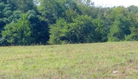 Mary #lot 1b, Lovettsville, VA 20180