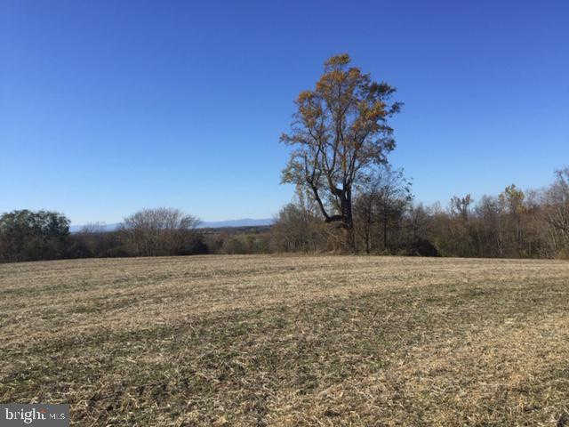 Another Property Sold - Lot A Fairfield Lane, Stevensburg, VA 22741