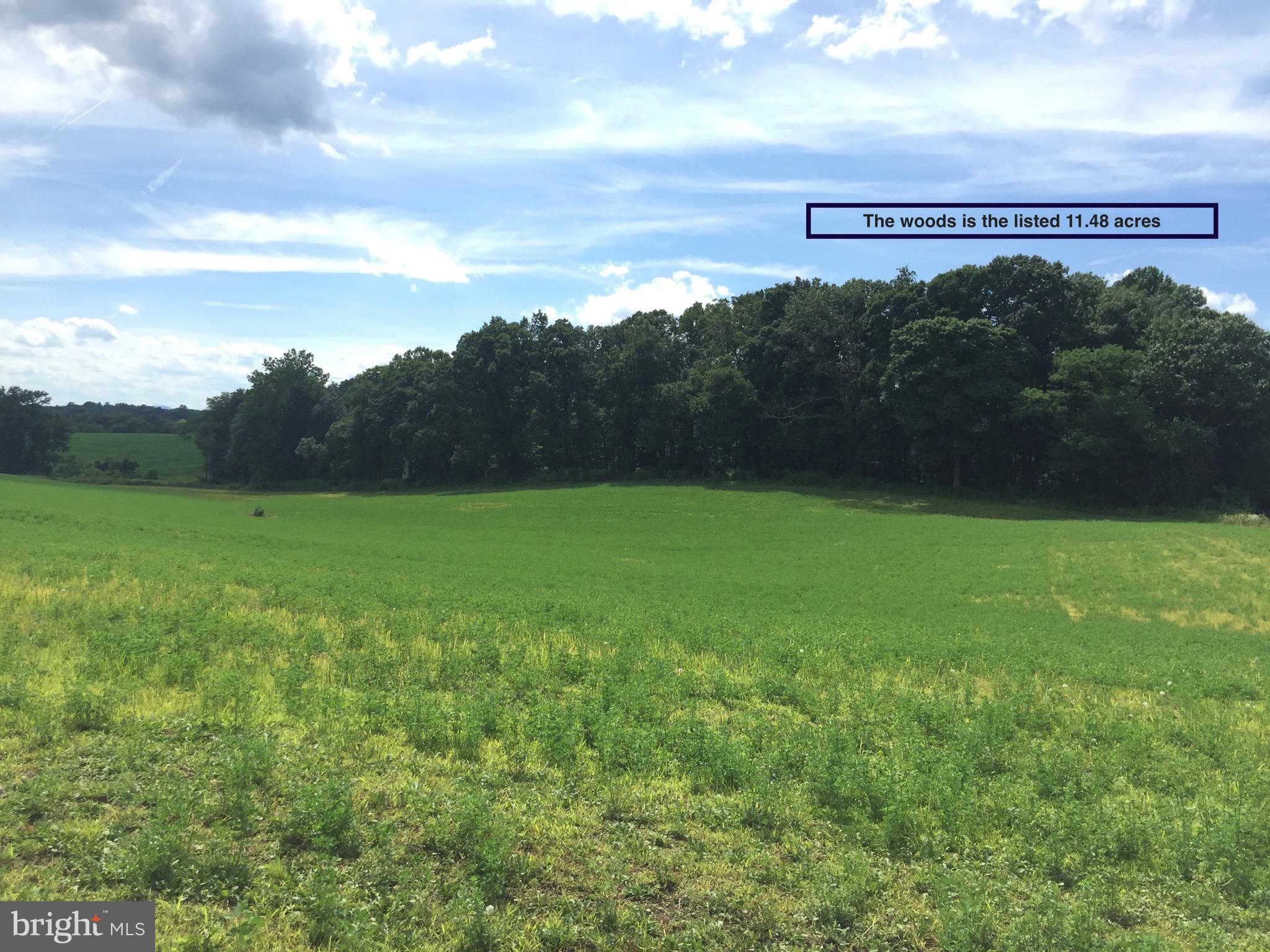 Another Property Sold - 00 Shelby Rd, Shelby, VA 22727