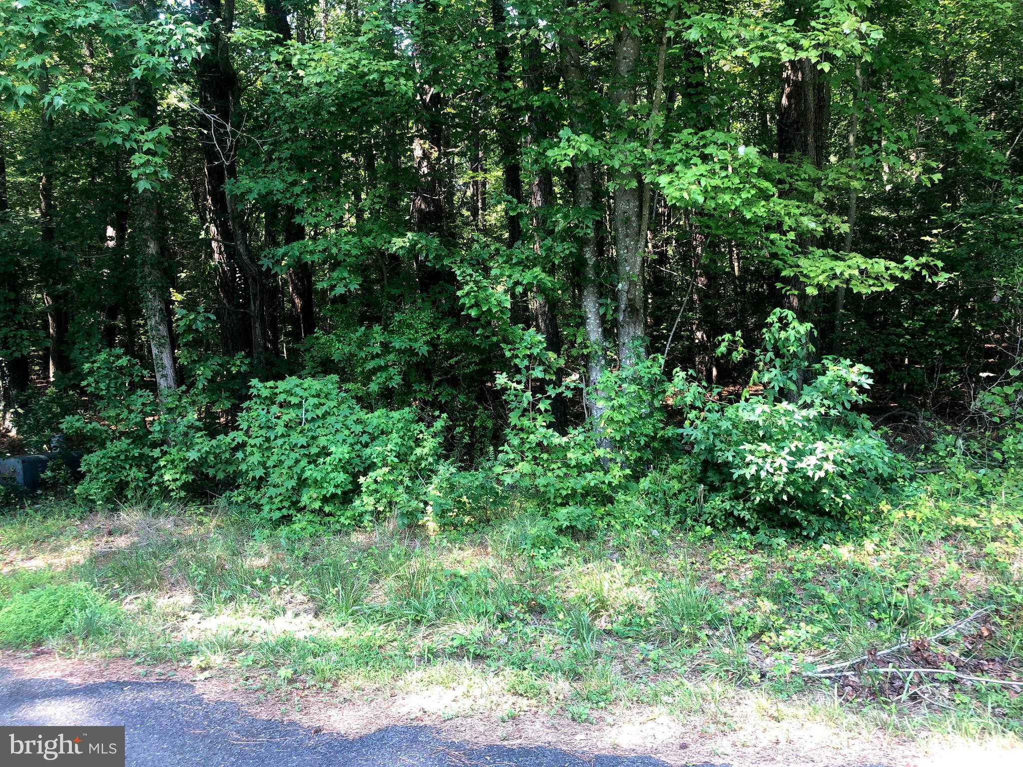 Lot 9 Portney's Overlook Road, Ridge, MD 20680 now has a new price of $15,000!