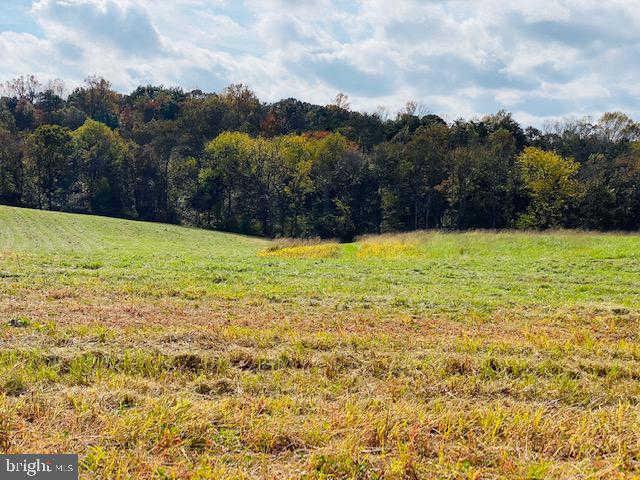 Another Property Sold - Lot 11 Mountain Ridge Way, Culpeper, VA 22701