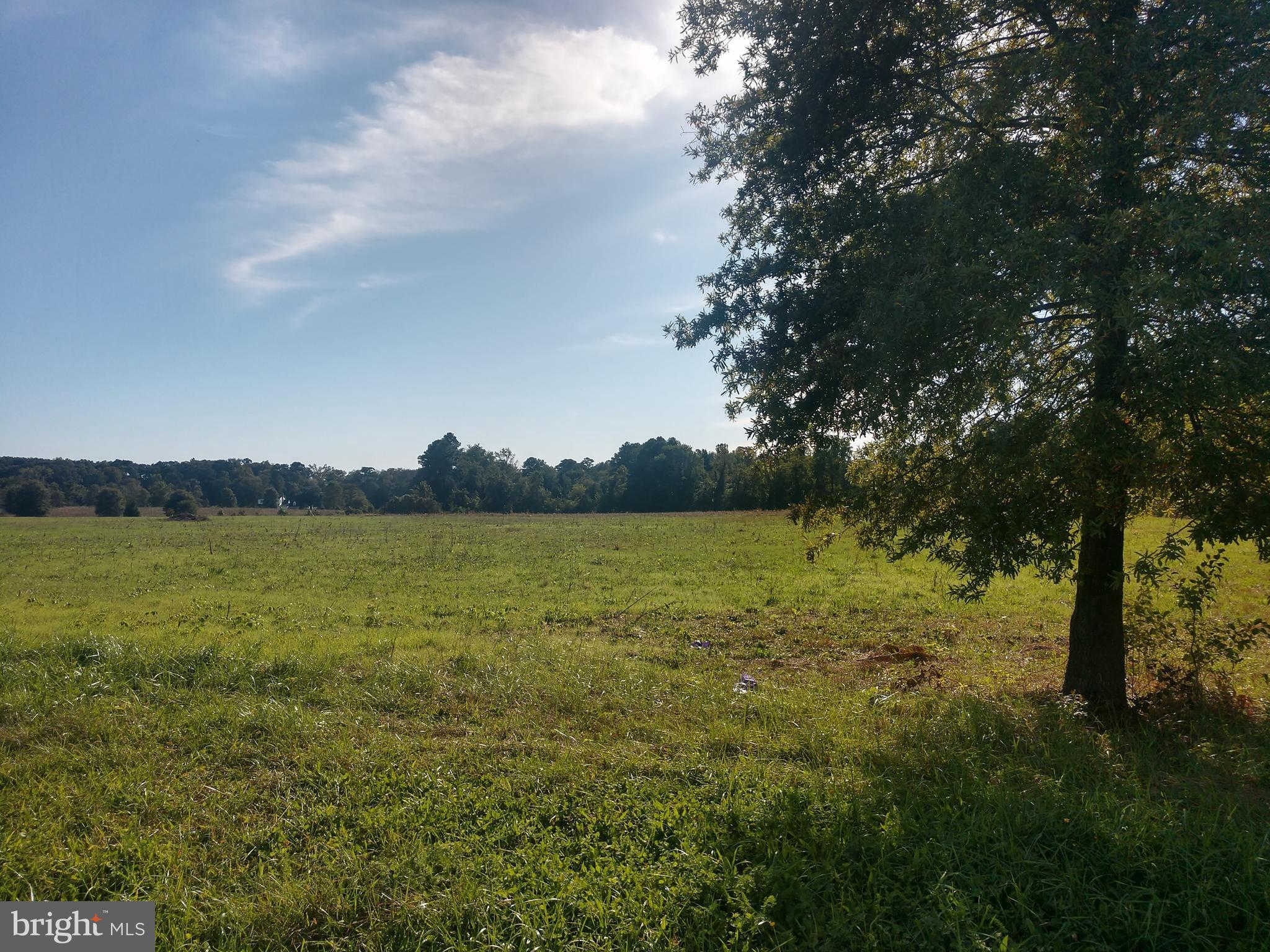 Another Property Sold - Lot 30 Hickory Cove Road, Hurlock, MD 21643