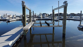 24 Pines Point Marina #a-24, Ocean Pines, MD 21811