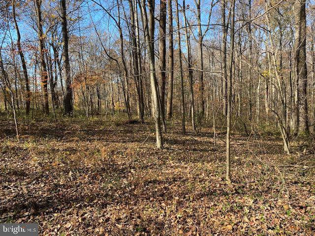 Another Property Sold - Lot 18 Mountain Ridge Way, Culpeper, VA 22701
