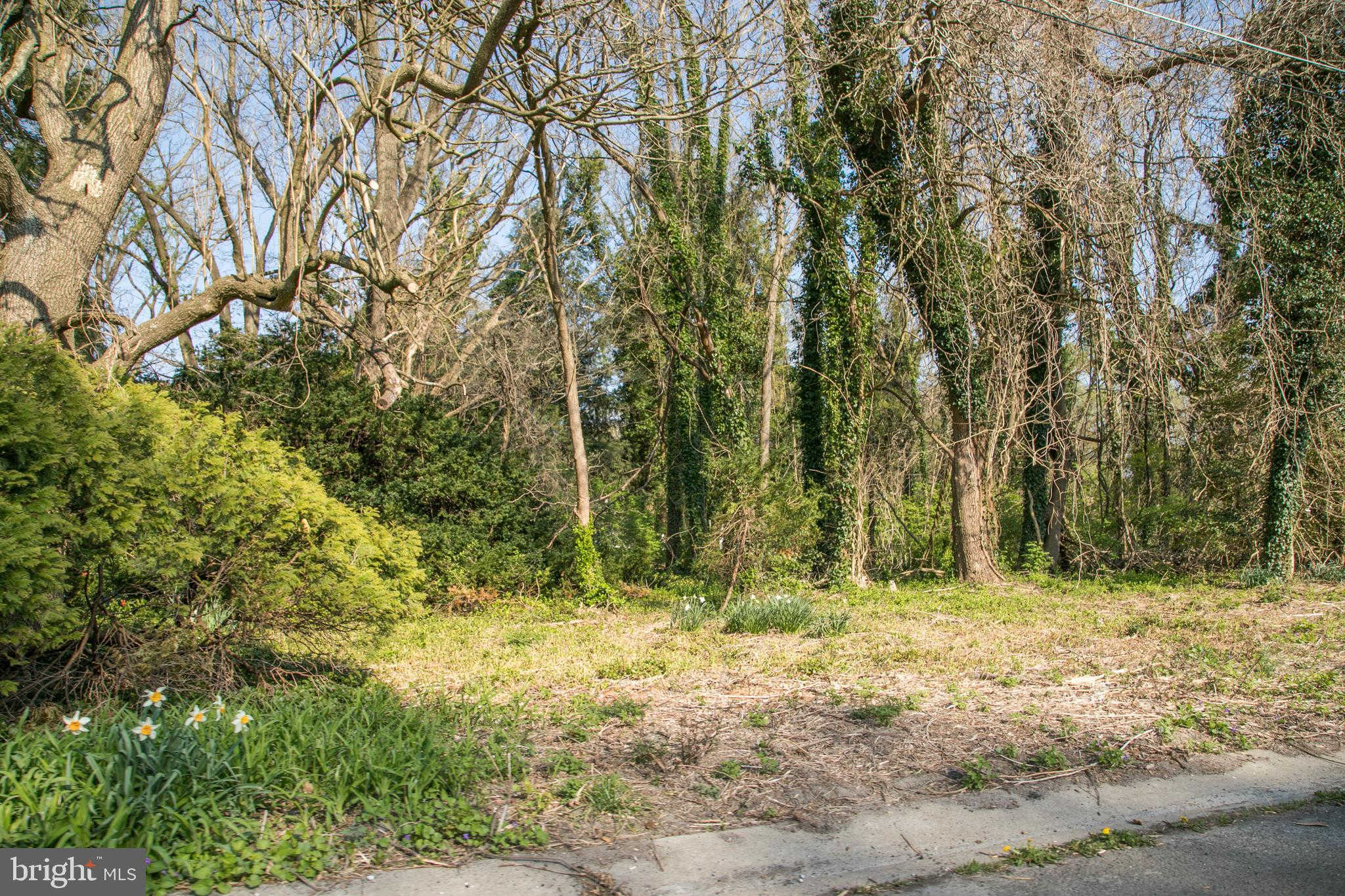 Cloverdale Street, Salisbury, MD 21804 is now new to the market!