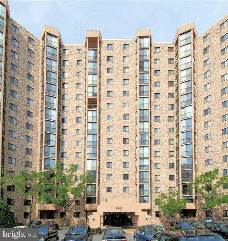 Another Property Rented - 5903 Mount Eagle Drive #1412, Alexandria, VA 22303