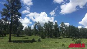 tbd Meadow Trail #1, Overgaard, AZ 85933