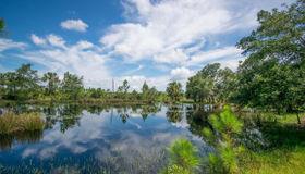 0000 Lake Harney Woods Boulevard, Mims, FL 32754