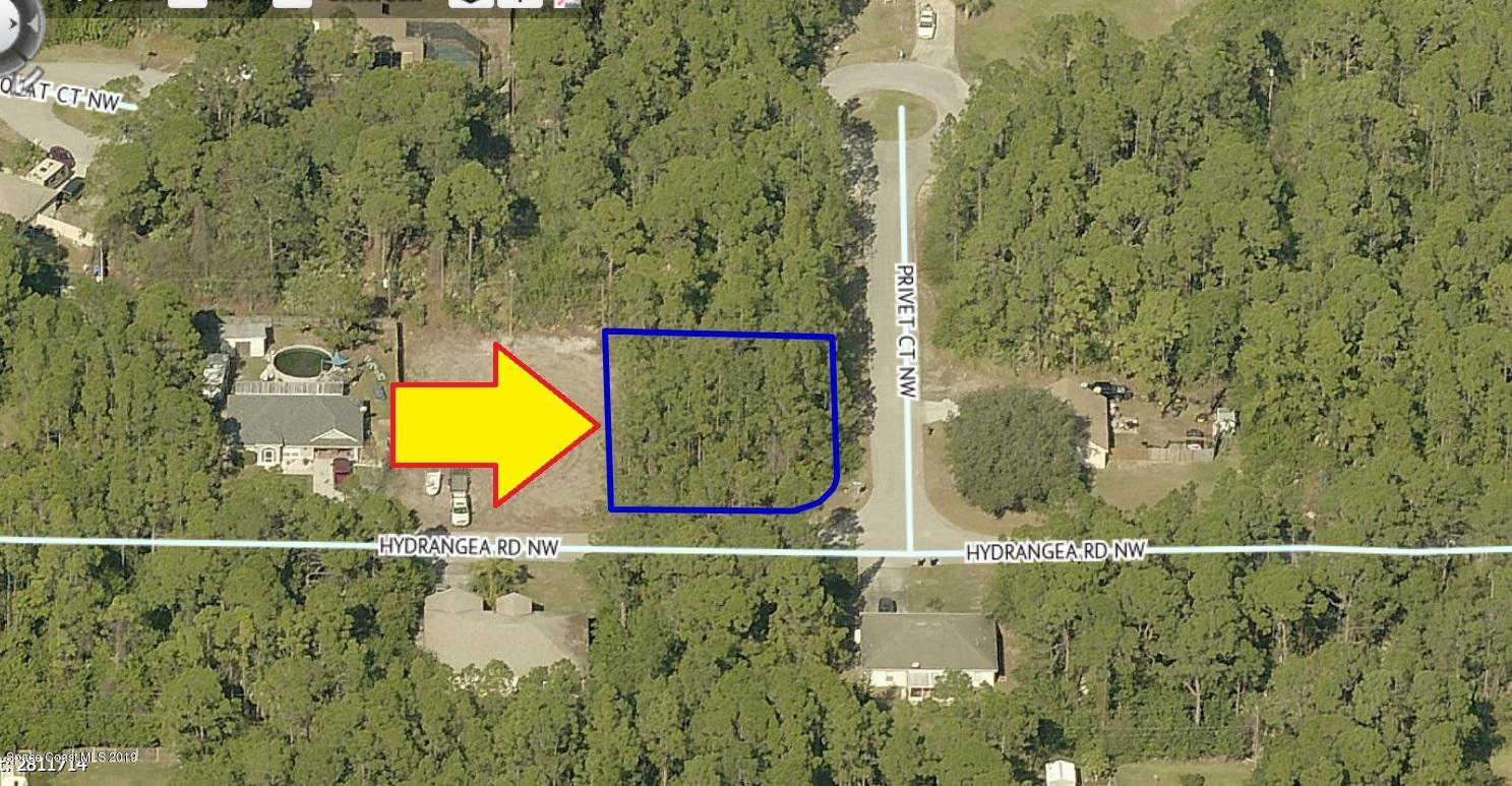 Another Property Sold - 1739 Hydrangea (Corner With Privet) Road, Palm Bay, FL 32907