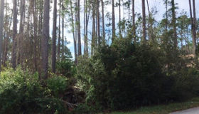 3 Edge Lane, Palm Coast, FL 32164