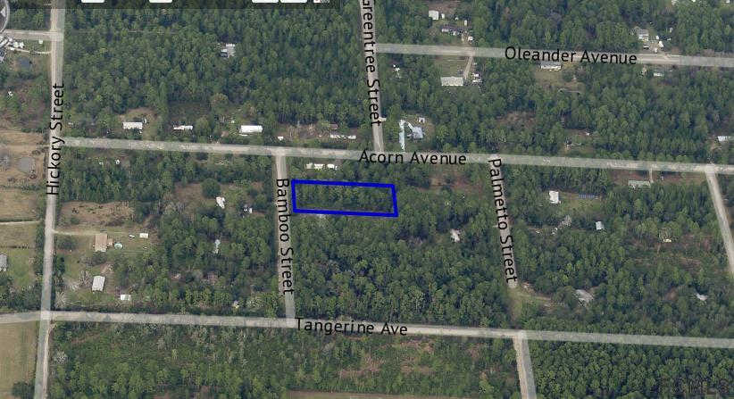 Another Property Sold - 2829 Bamboo St, Bunnell, FL 32110
